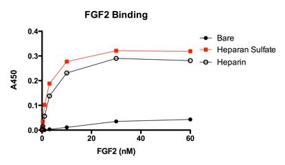 fgf2-binding.png